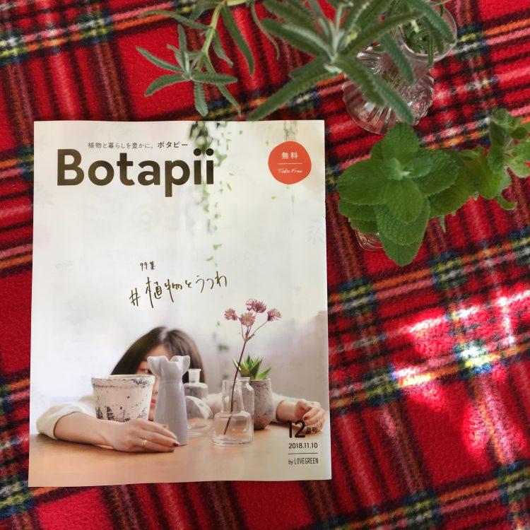 Botapiiボタピー
