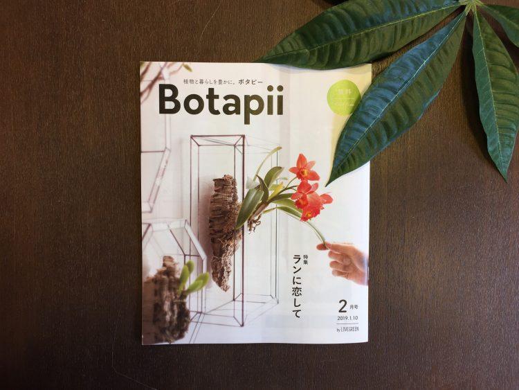ボタピー2月号表紙