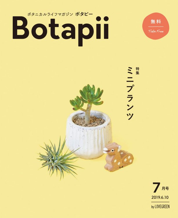 Botapii_vol29
